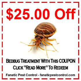 Bed Bug Treatment Discount